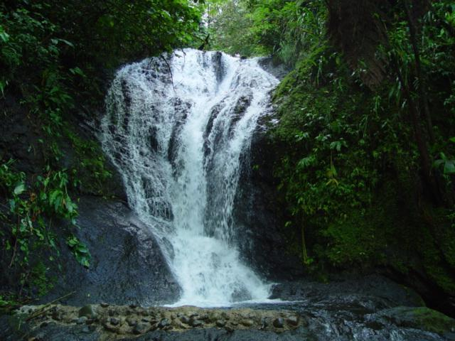 Waterfalls Everywhere - PARADISE PRIVACY PRICELESS! Just Read Our Reviews! - Manuel Antonio National Park - rentals