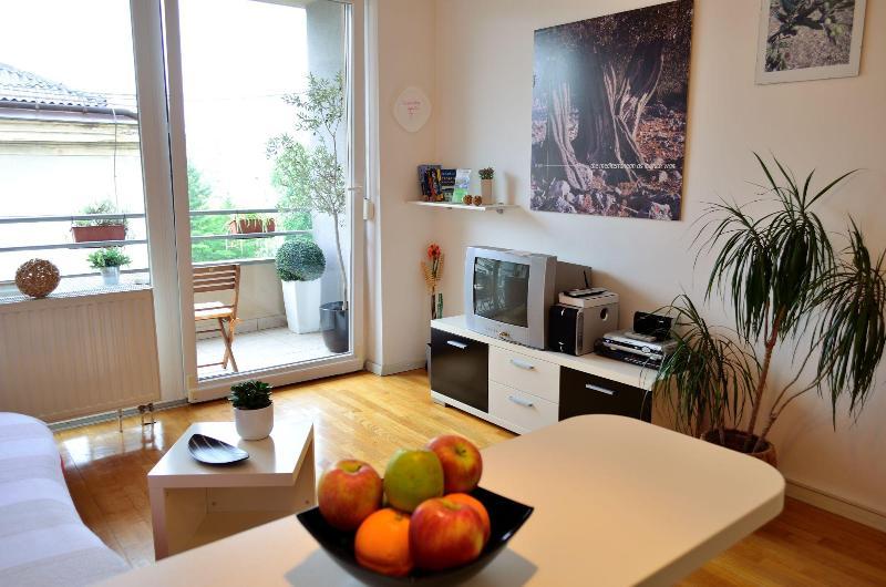 APARTMENT OLIVE - Image 1 - Zagreb - rentals