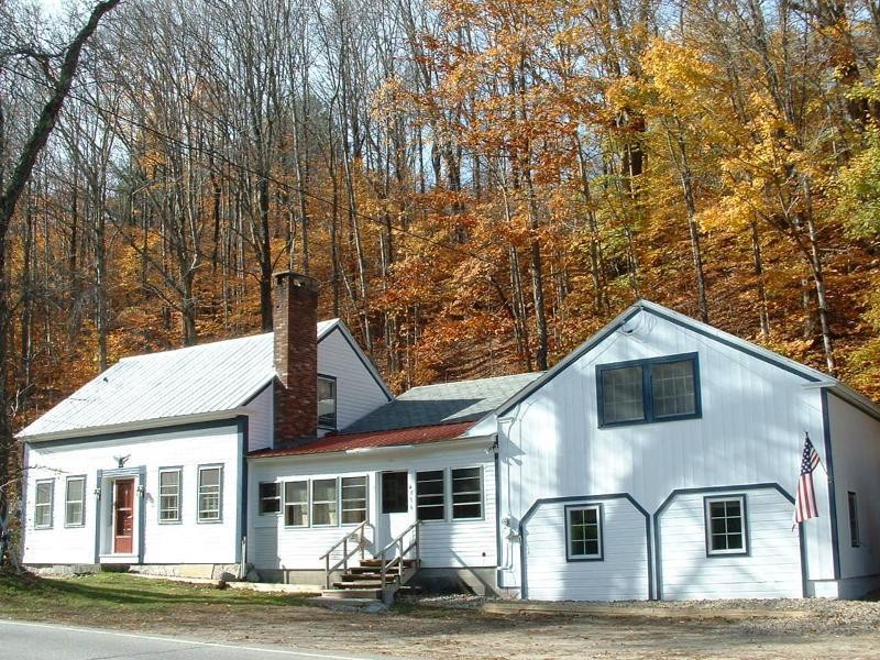 Spotless Stratton Mount Snow Home - Spotless Mount Snow Stratton Vacation Home - West Wardsboro - rentals