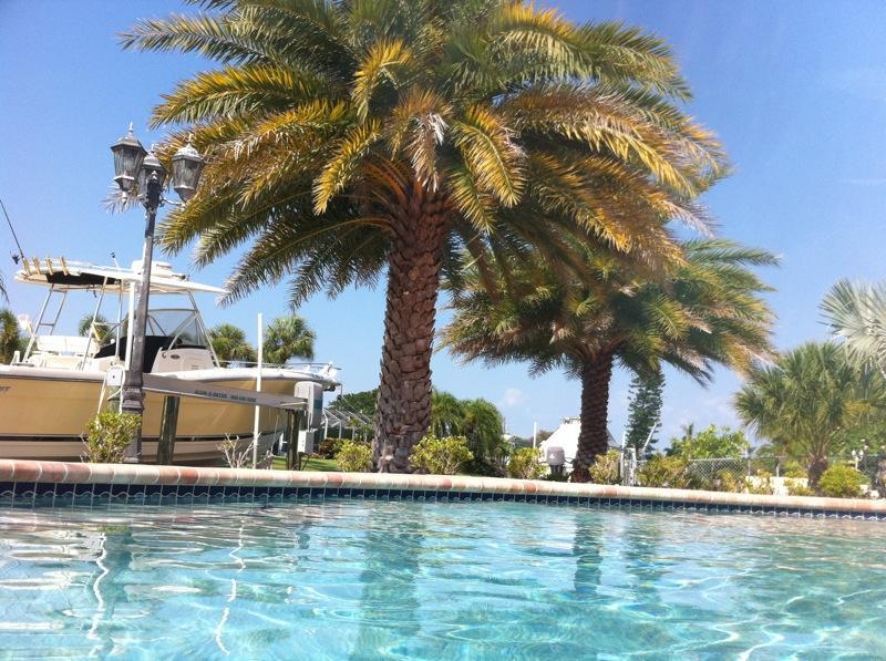 Pool perched above scenic sailboat water - Paradisaical 5*WaterfrontCanal/Pool/Dock/Kayak/Bikes/Hammocks/Private/Family Fun - Holmes Beach - rentals