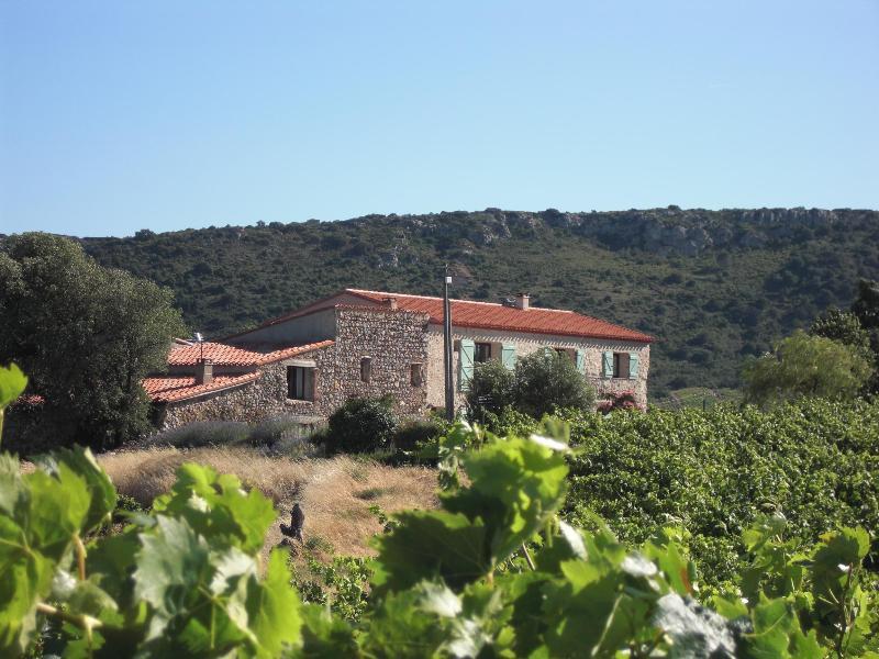 Vineyard farmhouse renovated to luxury standard - Image 1 - Maury - rentals