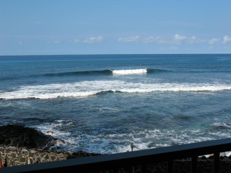 What a view while sitting on the lanai! Watch the sunset, the surfers, the turtles, the fish, ahhh! - OCEANFRONT~FLOOR TO CEILING GLASS~BANYAN TREE 204 - Kailua-Kona - rentals