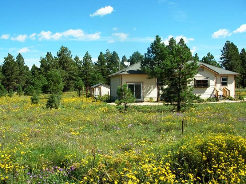 Front - Black-Eyed Susan's Cottage - Flagstaff - rentals