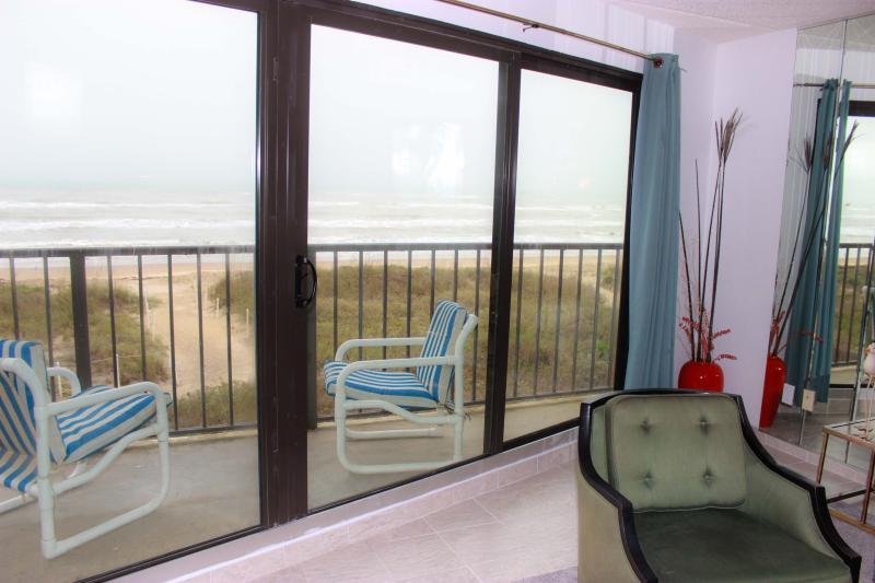 FLORENCE II 202 - Image 1 - South Padre Island - rentals