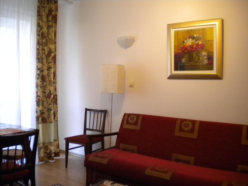 living room - Elegant sunny 1bedr apt/ balcony downtwn Bucharest - Bucharest - rentals