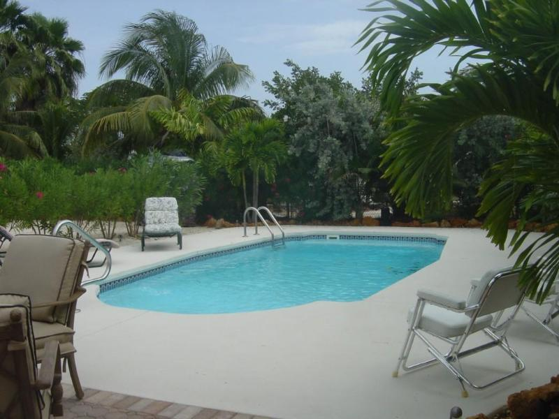 Peaceful Pool - Image 1 - Big Pine Key - rentals