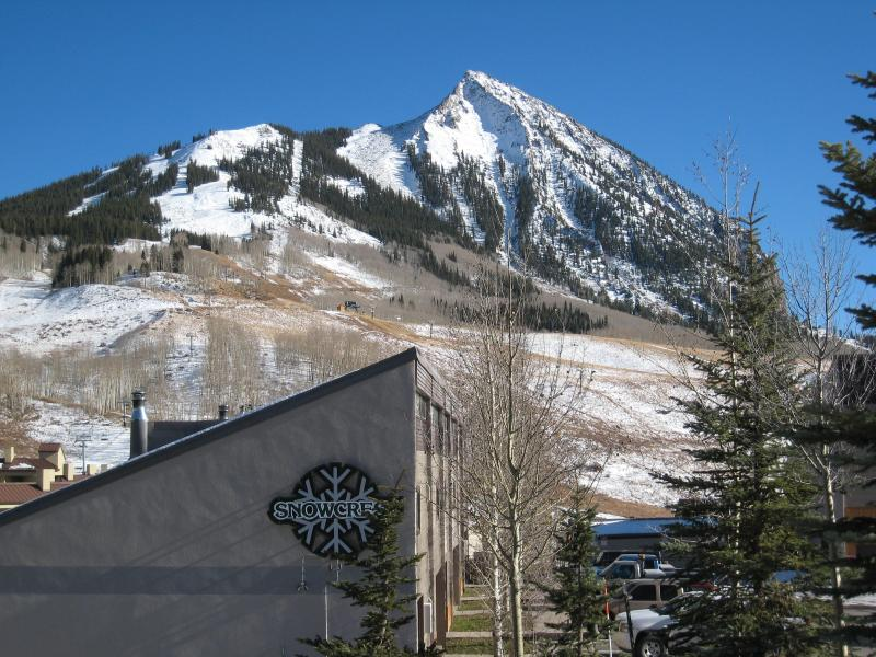 3 bedroom/2 bath Snowcrest Condo!  Walk to Lifts! - Image 1 - Crested Butte - rentals