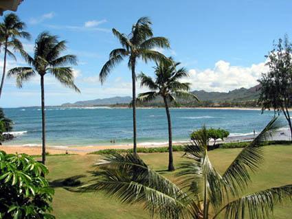 Grounds - Kauai Beachfront Condo...Steps to the Sand - Kapaa - rentals