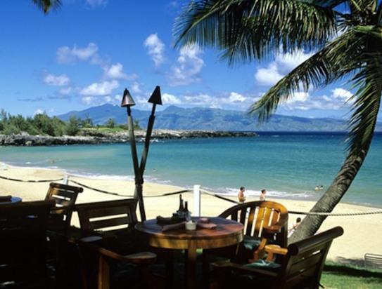 Luxury Oceanview Maui Villa - Image 1 - Kapalua - rentals
