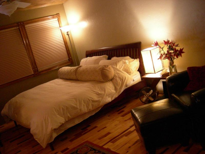 King Bed - In Town, Durango Studio, 3 Blocks To Animus River - Durango - rentals