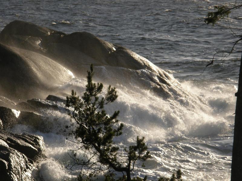 Casa di Mare Oceanfront Guest House - Image 1 - Halfmoon Bay - rentals
