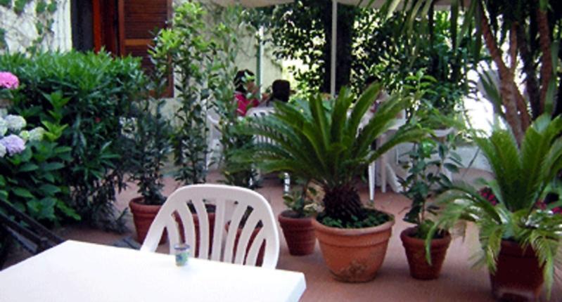 2--giardino-394-0.jpg - Glicine - Rome - rentals
