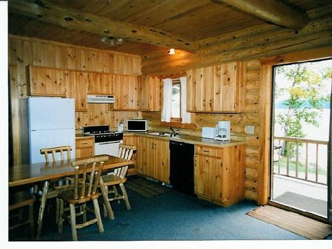 BASSWOOD LOG CABIN Deluxe, Fireplace, Barrier-free - Image 1 - Ely - rentals