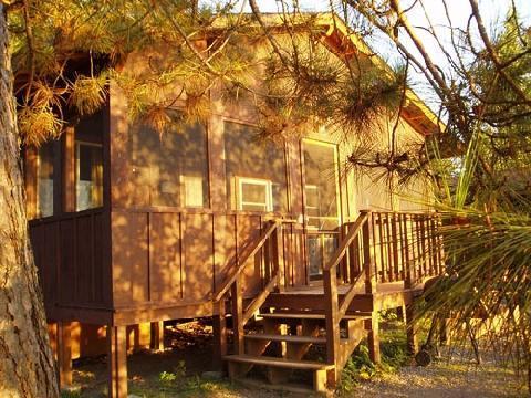 Birch, 3 Bedroom Cabin - Image 1 - Ely - rentals