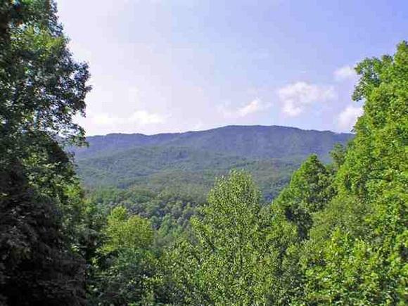 Smoky Mountain View - Rustic Charm - Gatlinburg - rentals