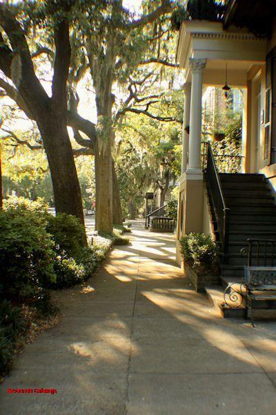 1043: Clary's Garden on Jones - Image 1 - Savannah - rentals