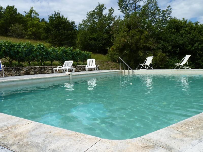 Verwarmd zwembad - Farmhouse with swimingpool in the Luberon. - Luberon - rentals