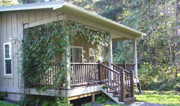 Cottage #1 - The Golden Eagle Cottages: 1 - Trinidad - rentals