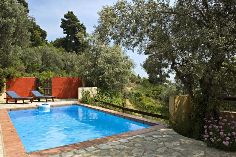 View of the private pool area - Private pool villa ideal for a private get-away! - Skopelos - rentals