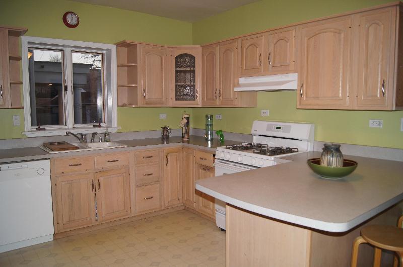 The Belleek Suites - Image 1 - Chicago - rentals