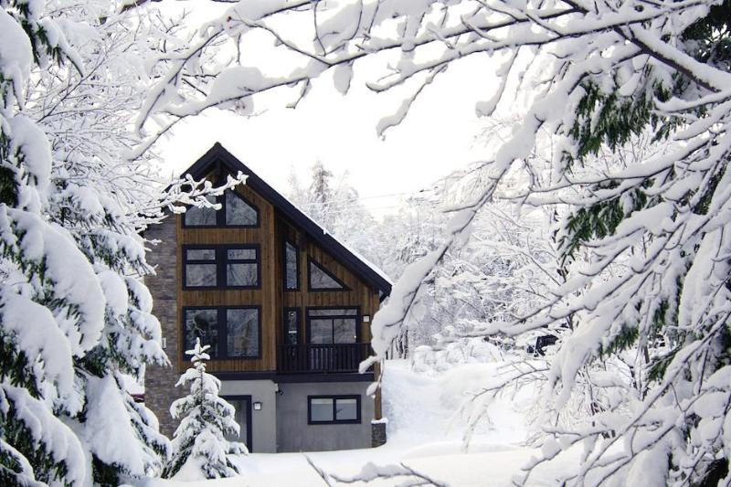 Higuma - Niseko - Image 1 - Niseko-cho - rentals