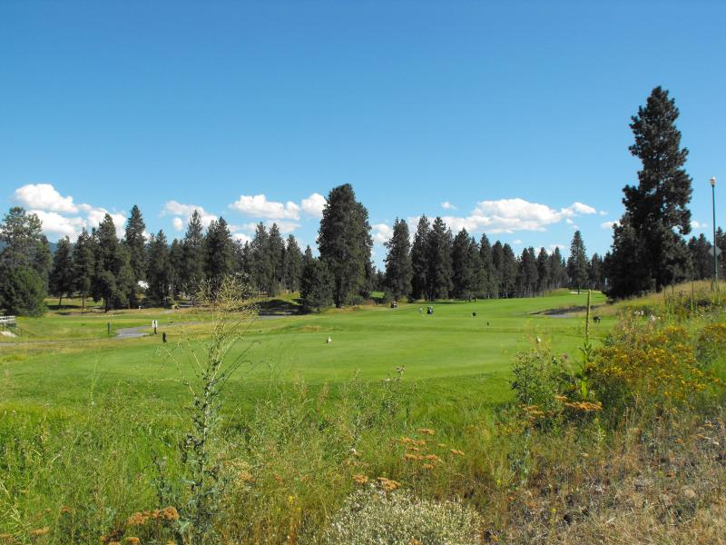 Golfers Paradise Luxery Condo house - Image 1 - Kelowna - rentals