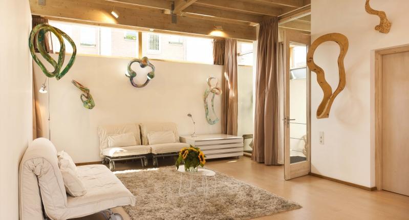 apartamento-en-amsterdam---sofas-cama-885-0.jpg - Starry Night Amsterdam - Amsterdam - rentals
