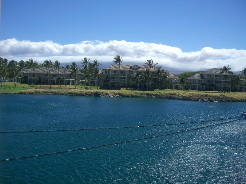 Rent a 2BR for the Price of 1 and Golf Discount! - Image 1 - Waikoloa - rentals