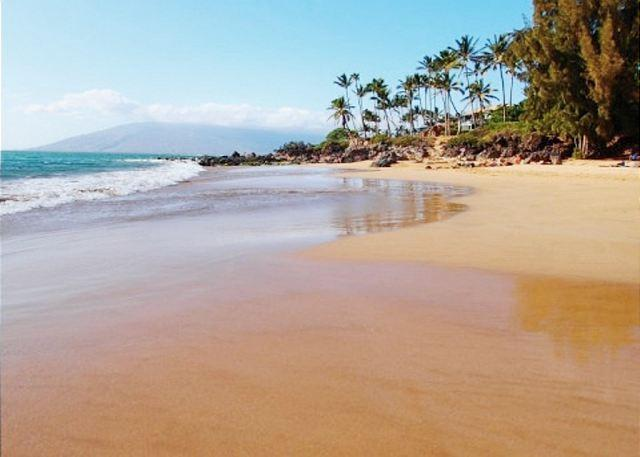 Maui Vista Is Right Across Charley Young Beach - Maui Vista 1-307 Renovated 1B/1B Sleeps 4 FANTASTIC Ocean View! - Kihei - rentals