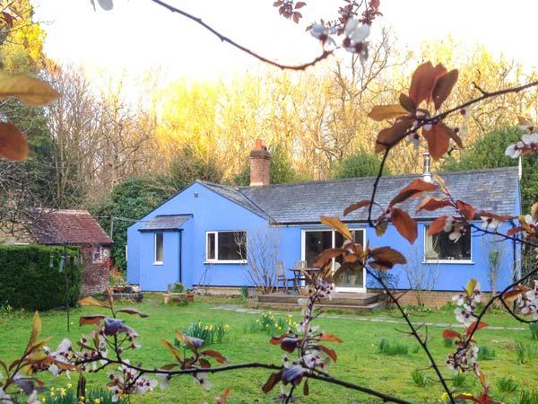 BIXLEY, open fire, half acre of gardens, forest location, in Beckley, Ref. 904938 - Image 1 - Peasmarsh - rentals