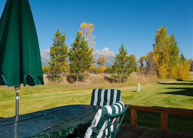 View from Deck - A Gem in Teton Shadows! - Jackson - rentals