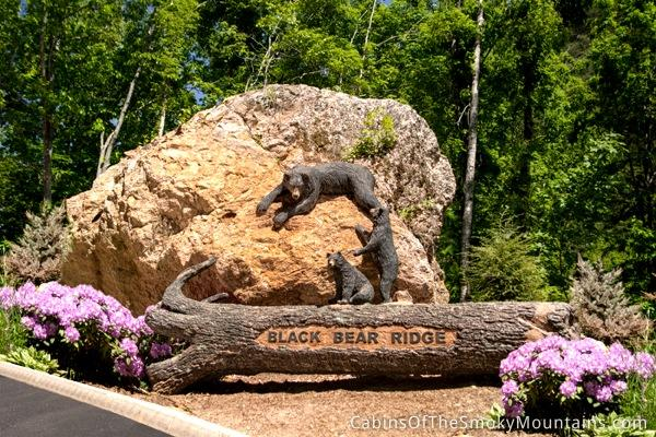 Splash Mountain - Image 1 - Sevierville - rentals