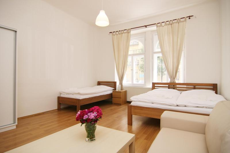 Big Apartment for Family close to the city center - Image 1 - Prague - rentals
