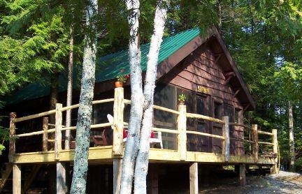 Camp Anne - Authentic Adirondack Cabin-peace, quiet, nostalgia - Saranac Lake - rentals