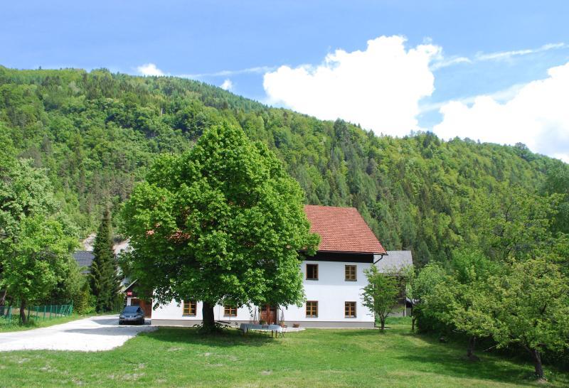 Country House Trata - De Luxe Apartment - Image 1 - Kranjska Gora - rentals