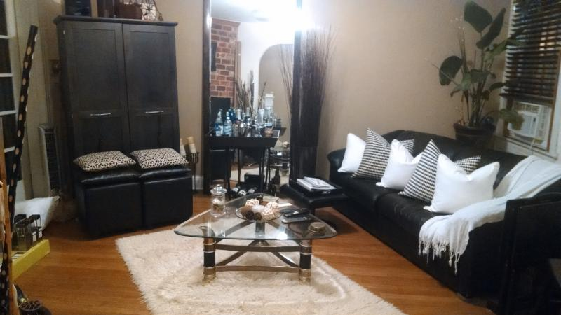 Living Room - Dog friendly, BR to rent in house LeDroit Park WDC - Washington DC - rentals