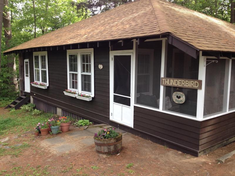 Large Adirondack Cabin/Private Lake/Lots of Extras - Image 1 - Pottersville - rentals