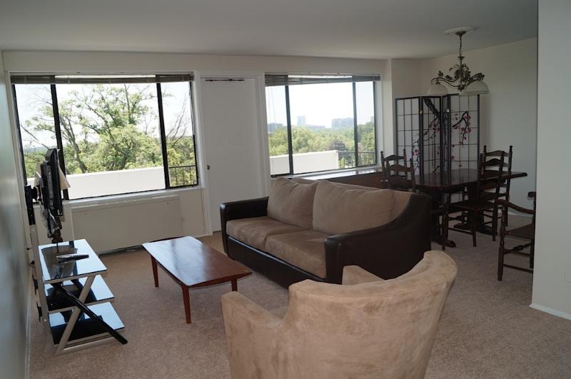 Washington, DC Area Executive Resort-Like Apt - Image 1 - Arlington - rentals