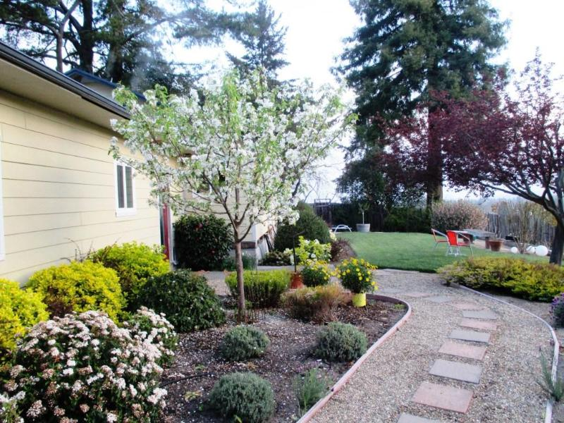 Exterior- Walkway to Main House Entrance - Sunrise Ridge Studio, Wine Country Mountain View - Santa Rosa - rentals