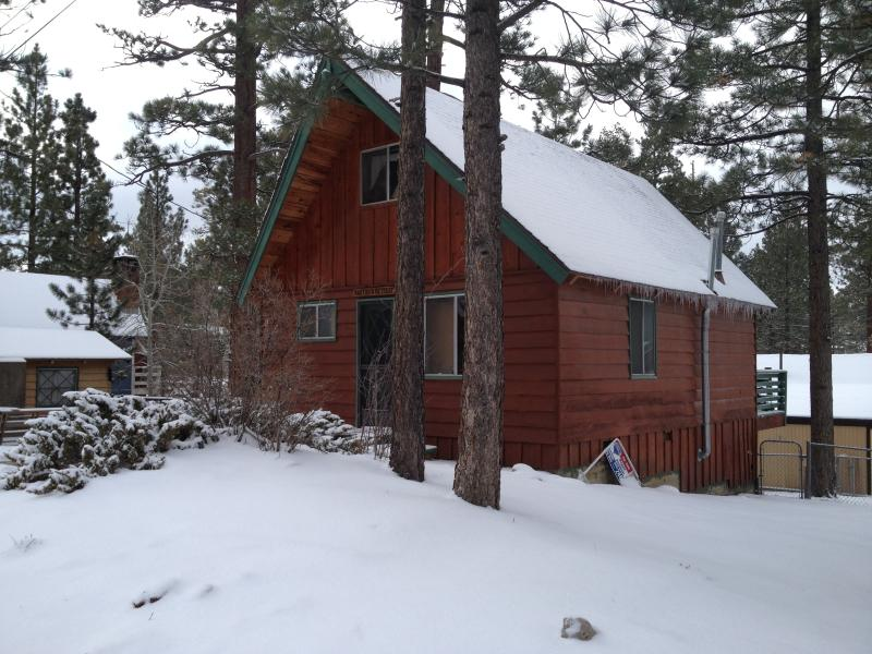 DixieBear Cabin - Cozy Cabin By The Lake, Family And Pet Friendly - Big Bear Lake - rentals