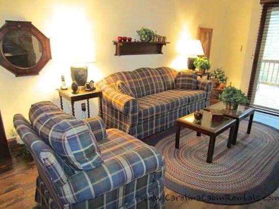Beechwood Villa Living Room with Queen Sized Pull Out Sofa - Beechwood Villa - Beech Mountain - rentals