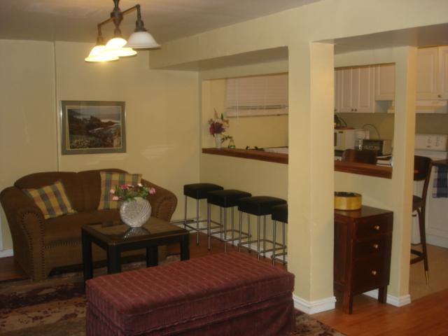 Living room - Furnished Homey 2 Br Apt Near Metro,hec,jgh,downtown - Montreal - rentals