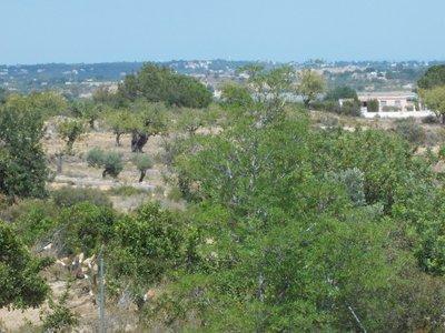 View from Villa - Villa  Cocota - Torrent - rentals