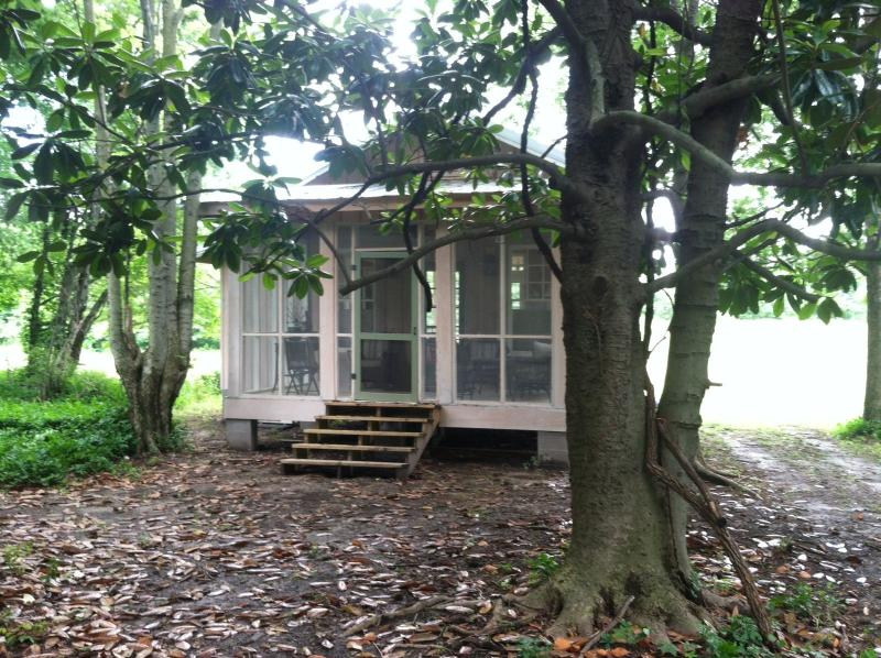 Back of house - Charming cottage in the Mississippi Delta - Shaw - rentals