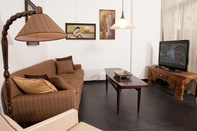 Luxurious 1.5BR 30/3 Olei Tzion St. - Image 1 - Tel Aviv - rentals