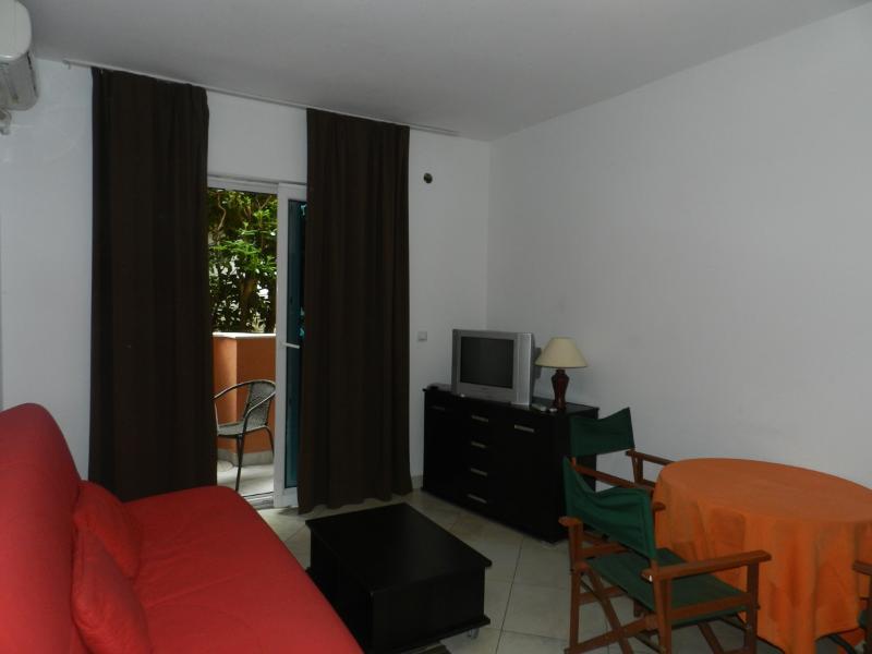 Apartments Dušan - 92761-A1 - Image 1 - Budva - rentals