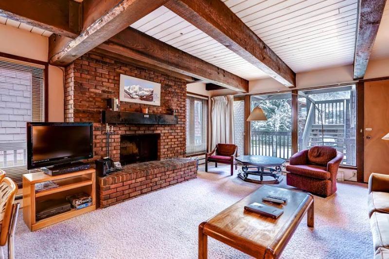 Cottonwoods Condo 2F - Image 1 - Aspen - rentals