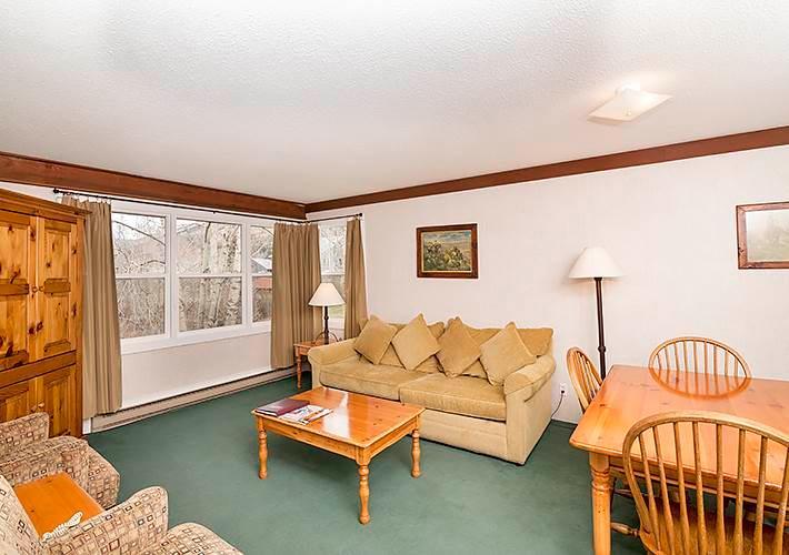 Mountainside Inn #113 - Image 1 - Telluride - rentals