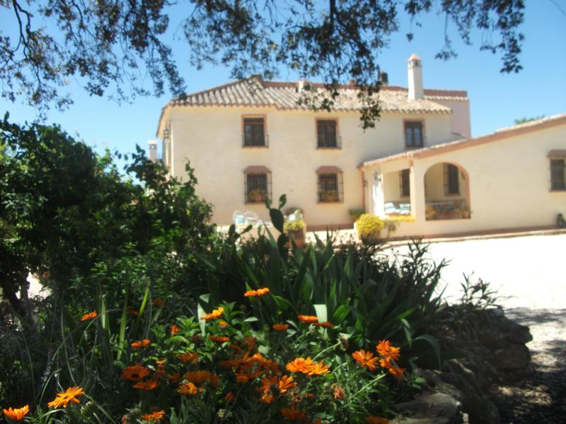the old bakery, now converted in holiday rental - Stunning Hispano-Moorish villa, pool,sleeps 6 - Antequera - rentals