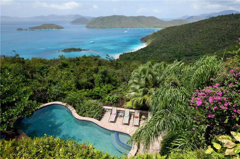Hakuna Matata: High-End Island Living! - Image 1 - Cruz Bay - rentals